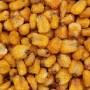 Corn-Nuts-Roasted-Salted-Close-Up