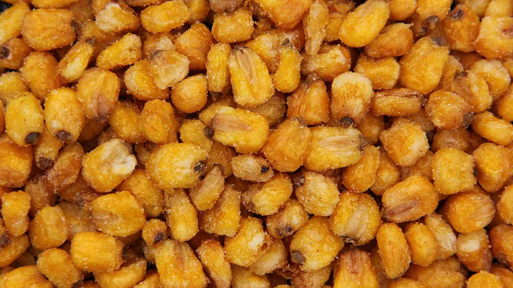 Beckner Farms | Roasted Salted Corn Nuts